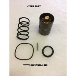 KITPR2827 Kit 55°C pour A11513574
