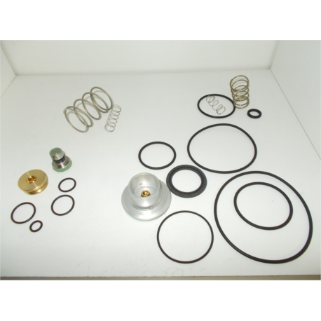 Kit de rechange complet de valve d'admission R20E R20Enc