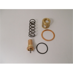 KVAT.0290 kit de rechange pour vanne thermostatique VT - VTF20 / 55°