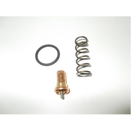 KVAT.1395 kit de rechange pour vanne thermostatique VT - VTFT25/27 63°