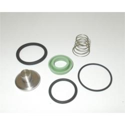 KVPM.0150 kit de rechange pour vanne de pression minimum G20 - G20F
