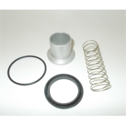 KVPM.0350 kit de rechange pour vanne de pression minimum G40
