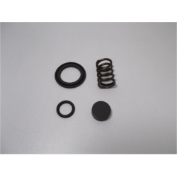 KINJ.0195 kit injection ISG2-ISG2N-ORxEI
